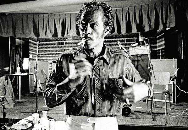 chuck berry by terry