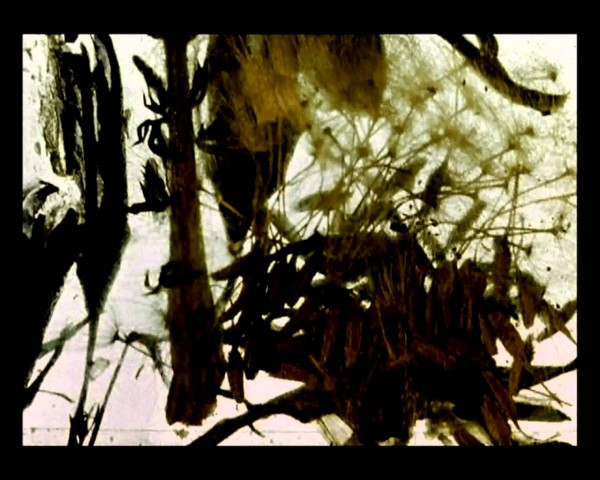 brakhage still two